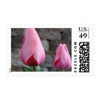 MOTHER'S DAY GIFTS 26 STAMPS TULIPS Mom Mothers
