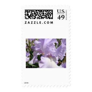 MOTHER'S DAY GIFTS CARDS Mugs 13 Purple IRISES Stamps