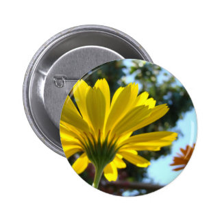 MOTHER'S DAY GIFTS CARDS Mugs 2 Daisy Flowers Button