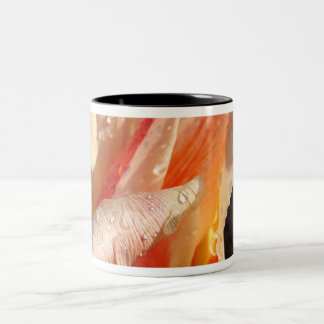 MOTHER'S DAY MUGS 19 Gifts TULIPS Tulip Flowers