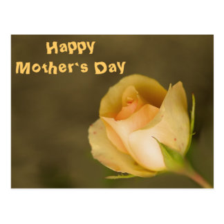 Mother`s Day Postcard