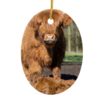 Mother scottish highlander cow near newborn calf ceramic ornament