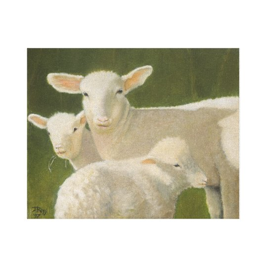 Mother Sheep Canvas Print