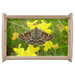 Mother Shipton Moth Serving Tray