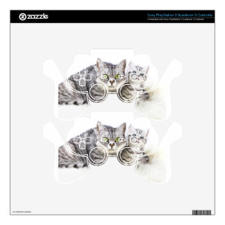 Mother silver tabby cat with young kitten.jpg decal for PS3 controller