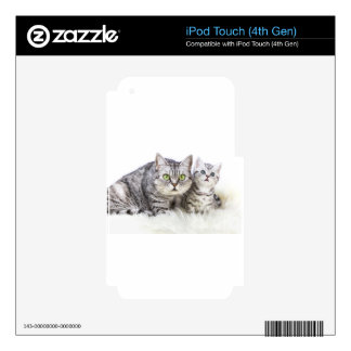 Mother silver tabby cat with young kitten.jpg iPod touch 4G decals