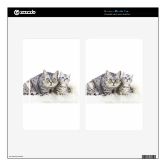 Mother silver tabby cat with young kitten.jpg skins for kindle fire