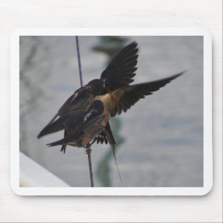 Mother swallow mouse pad
