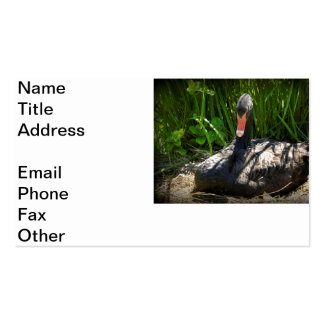 Mother Swan Double-Sided Standard Business Cards (Pack Of 100)