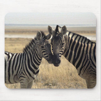 Mother zebra and young zebra mouse pad