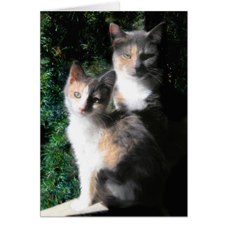 """Mothers & Daughters"" Greeting Card"