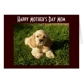 MOTHER'S DAY ADVICE FOR MOM CARD