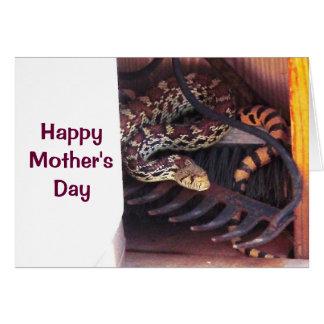 Mother's Day - Bull Snake Card