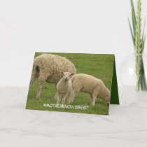 Mother's Day card featuring lamb