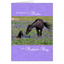 Mother's Day Card for both Moms - Mare with Foal
