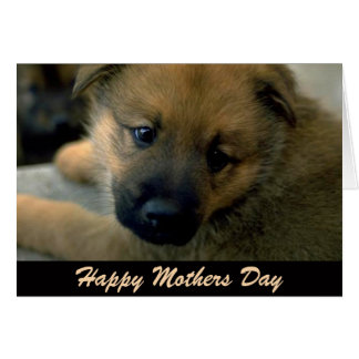 Mothers Day Card from Dog, Cuddle