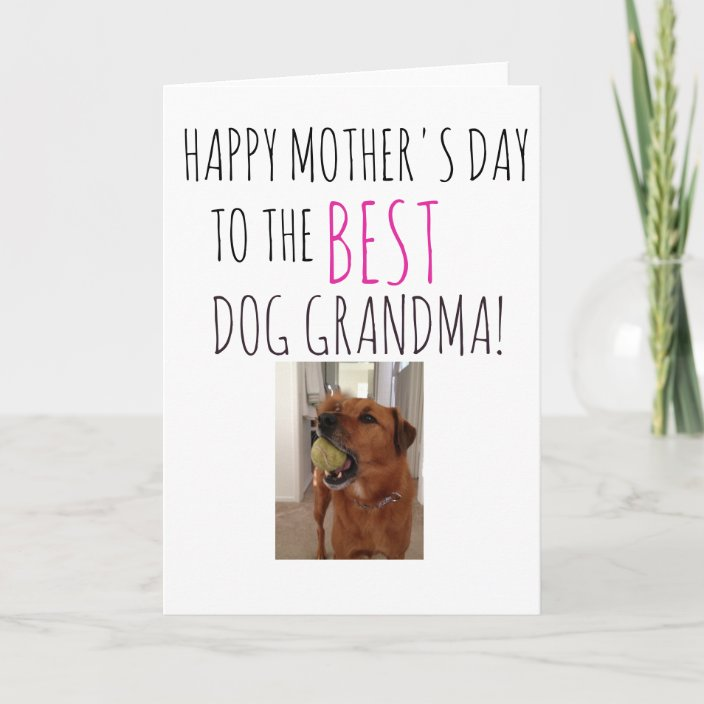 Mothers Day Card From Dog To