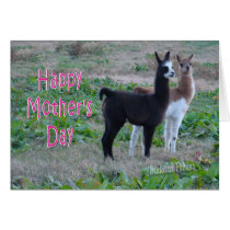 Mother's Day card-llama kids Card