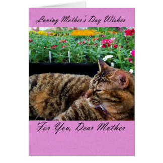 Mother's Day card, Mother's Day Card with cat