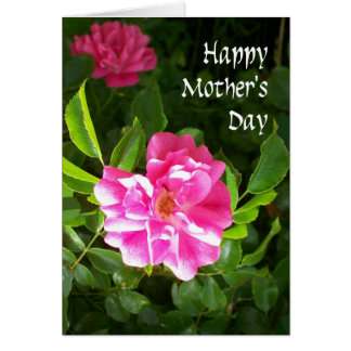 Mother's Day Card - Pink Roses