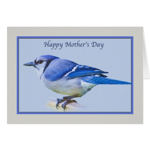 Mother's Day Card with Blue Jay Bird