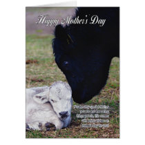 Mother's Day Card With Spring Cow And Calf - Speci