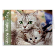 Mother's Day Cat and Kitten Cards