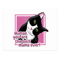 Mother's Day Cat Postcard