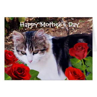 MOTHER'S DAY CAT WITH RED ROSES CARD