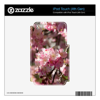 Mother's Day Crabapple Tree iPod Touch 4G Decal