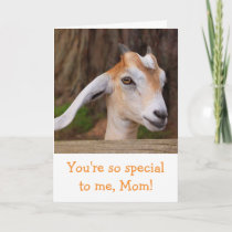 Mother's Day Cute Baby Goat Card