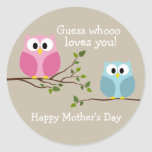 Mothers Day - Cute Owls - Whooo loves you Classic Round Sticker