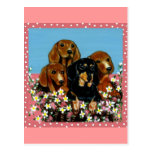 Mother's Day Dachshunds Postcard