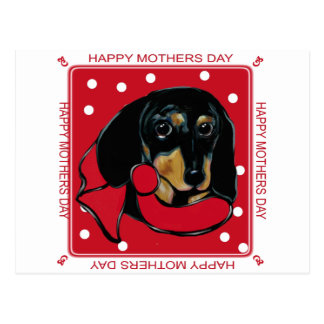 MOTHERS DAY DOXIE POSTCARD