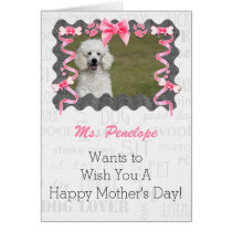 Mother's Day from the Dog in Pink and Gray Card