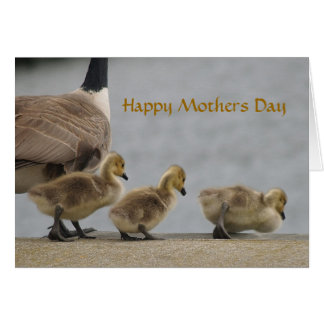 Mothers Day Geese Card