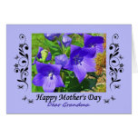 Mother's Day, Grandma, balloon flowers, curlicues Card