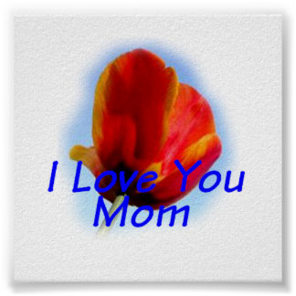 Mother's Day I Love You Mom Poster