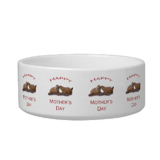Mother's Day Kiss Cat Food Bowls