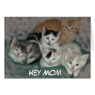 Mother's Day Kittens Card