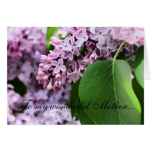 Mother's Day Lilacs Greeting Card