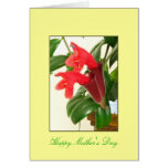 Mother's Day Lipstick Plant Card