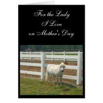 Mother's Day Love Miniature horse greeting card