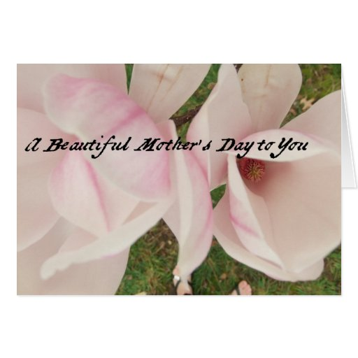 Mother's Day Magnolias 2013 Greeting Card