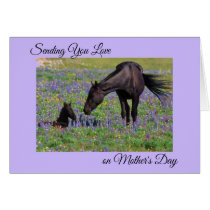 Mother's Day Mare & Foal Bluebell Pasture Photo Card
