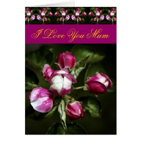 Mother's Day Pink Cherry Buds card