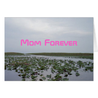 Mothers Day Pink Mom Forever Water Lilies Card