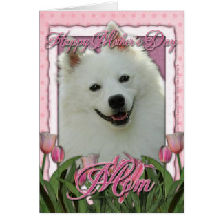 Mothers Day - Pink Tulips - American Eskimo Greeting Card