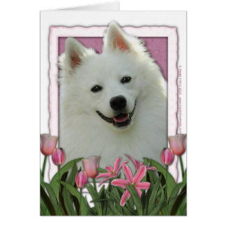 Mothers Day - Pink Tulips - American Eskimo Card
