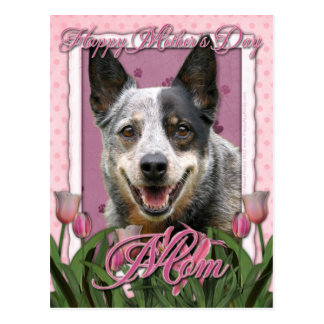 Mothers Day - Pink Tulips - Australian Cattle Dog Postcard